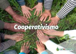 11. Programa de Educación Cooperativa