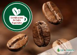 9. Programa de Certificación de Cafés Especiales
